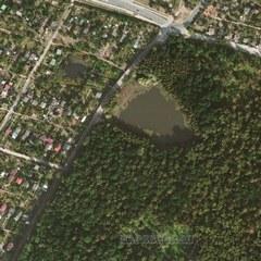 Спутниковая карта Локнянского района 1 см - 20 м