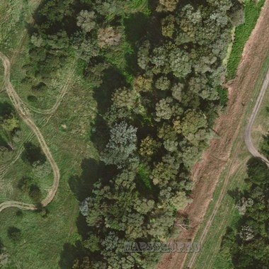 Спутниковая карта Пугачевского района 1 см - 20 м